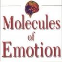 https://www.ei-psychology.org/images/avatar/group/thumb_0182d931cf1c76cf5afa6eba9ab72e06.jpg
